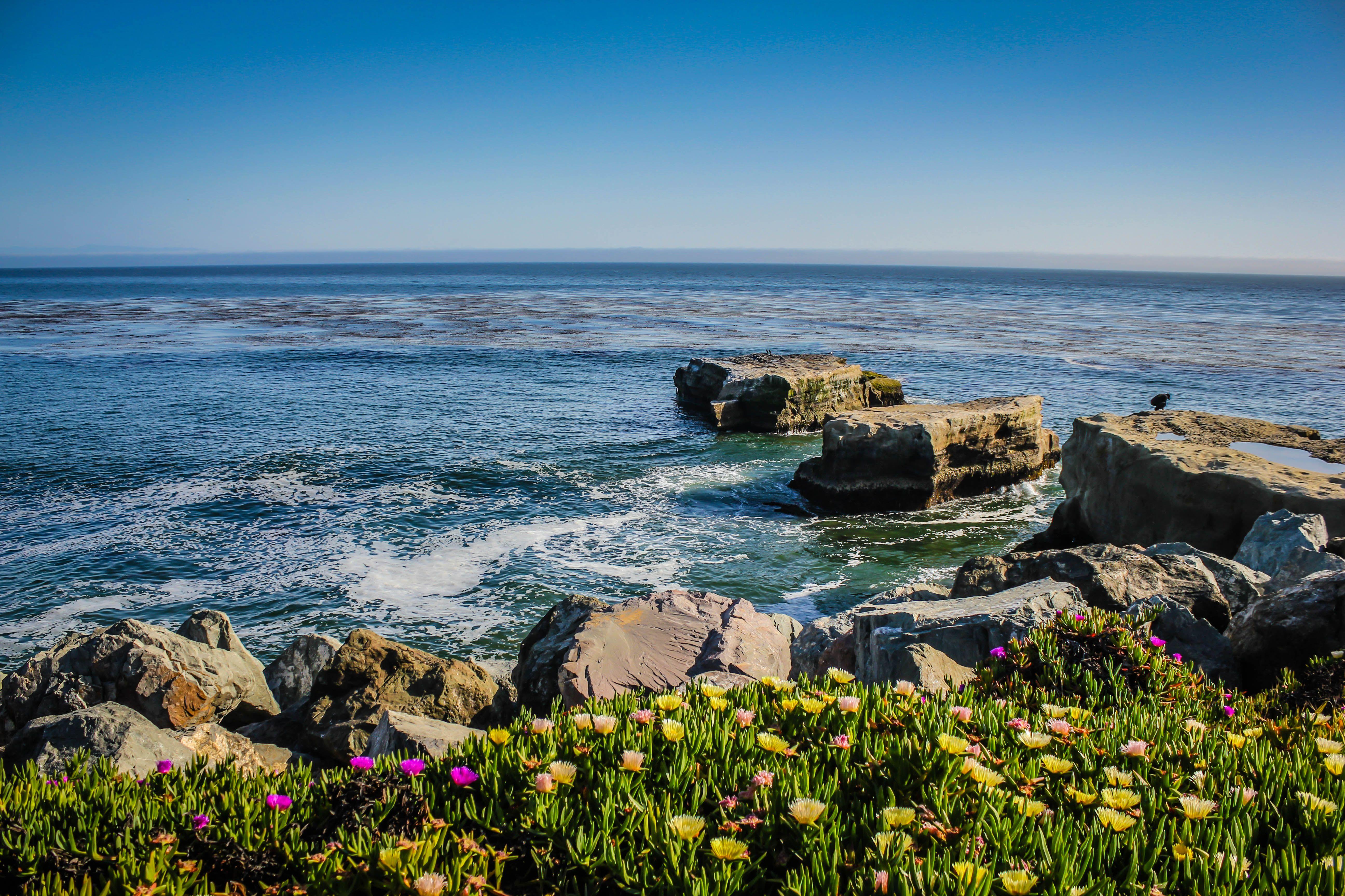 Pin By John P Rauls On California California Wallpaper California Travel Santa Cruz