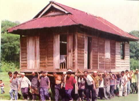 Moving A Strawbale House Malaysia Moving House Moving Humor Moving Houses Funny