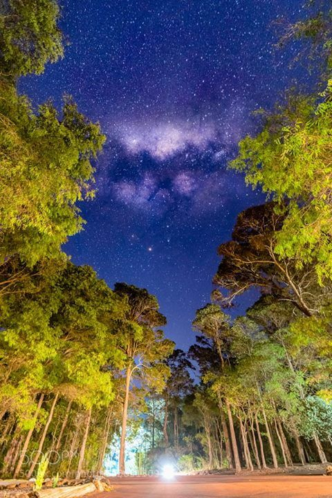 Night Sky @ Riverlen Chalets  Night Sky @ Riverlen Chalets Margaret River Western Australia.  Camera: NIKON D810 Lens: Zeiss Distagon T 2.8/15 ZF.2 Focal Length: 15mm Shutter Speed: 30sec Aperture: f/2.8 ISO/Film: 1600  Image credit: http://ift.tt/27nEIyT Visit http://ift.tt/1qPHad3 and read how to see the #MilkyWay  #Galaxy #Stars #Nightscape #Astrophotography