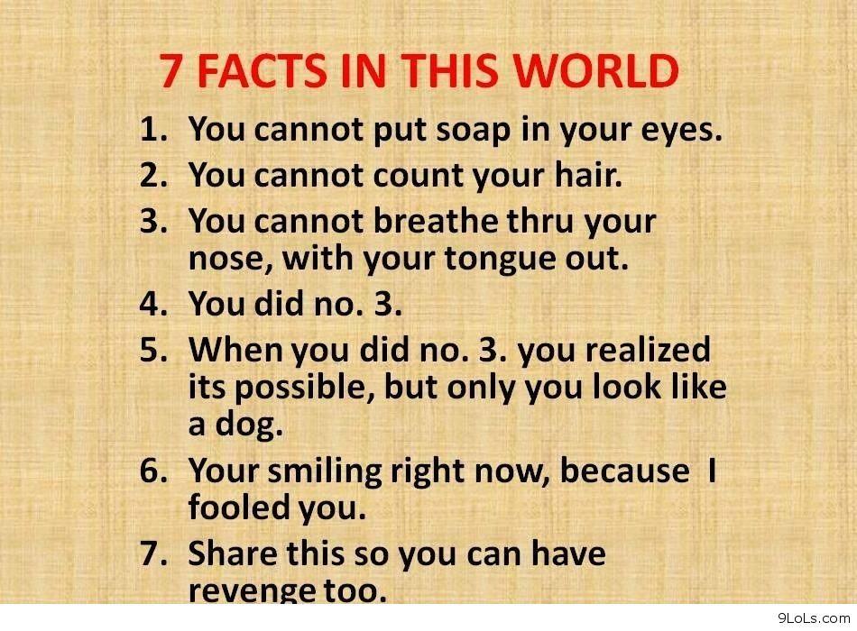 funny pics   funny amazing facts 2   random funny stuff ...