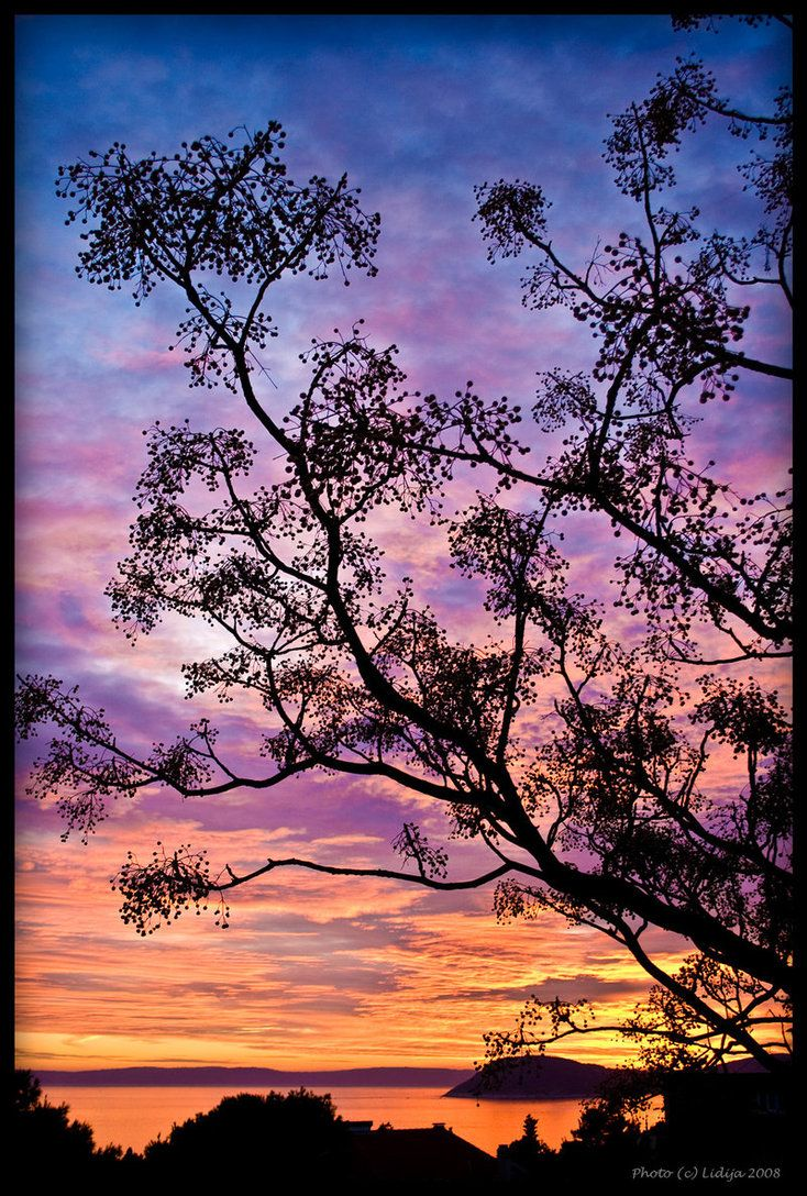 Colorful sunset by *photologia on deviantART