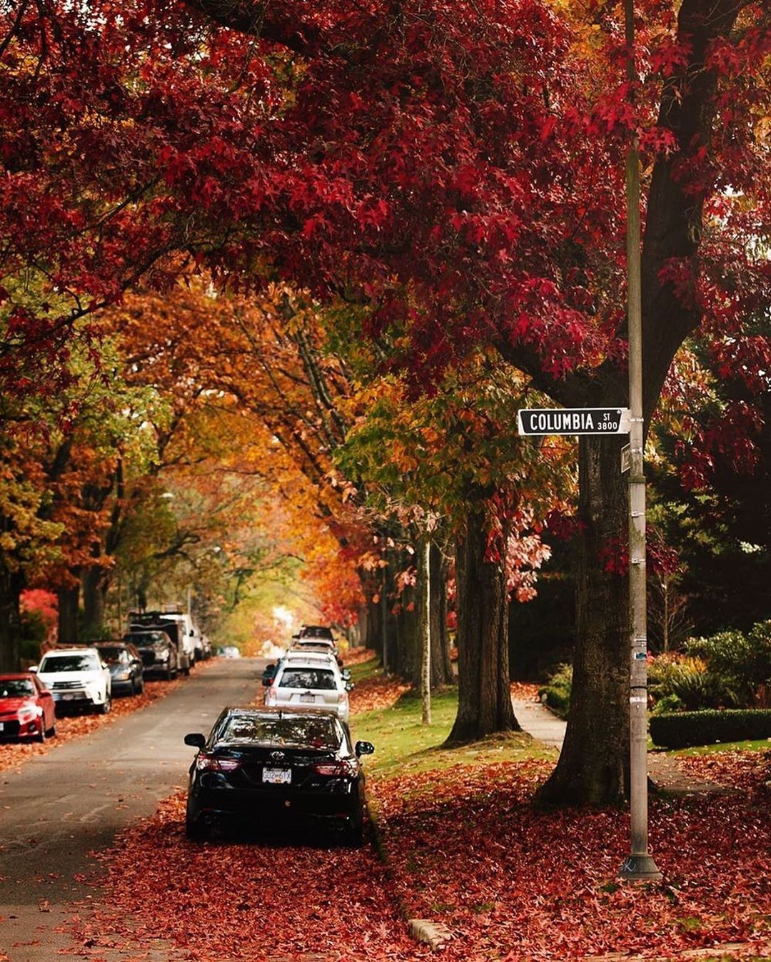 Pin By Michael Arrowsmith On Vancouver, British Columbia
