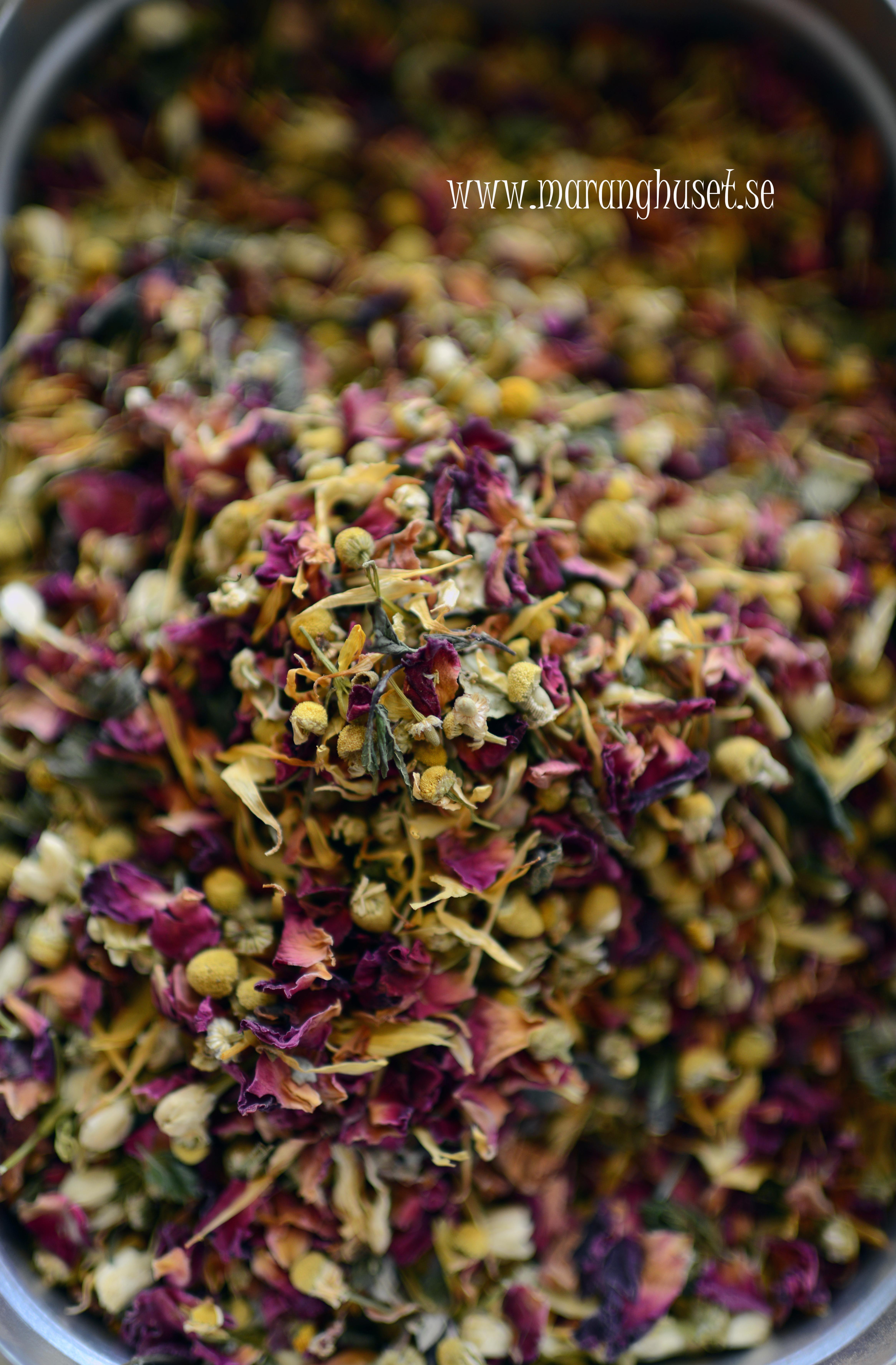 Making new balance tea - calming and focusing - meditation tea