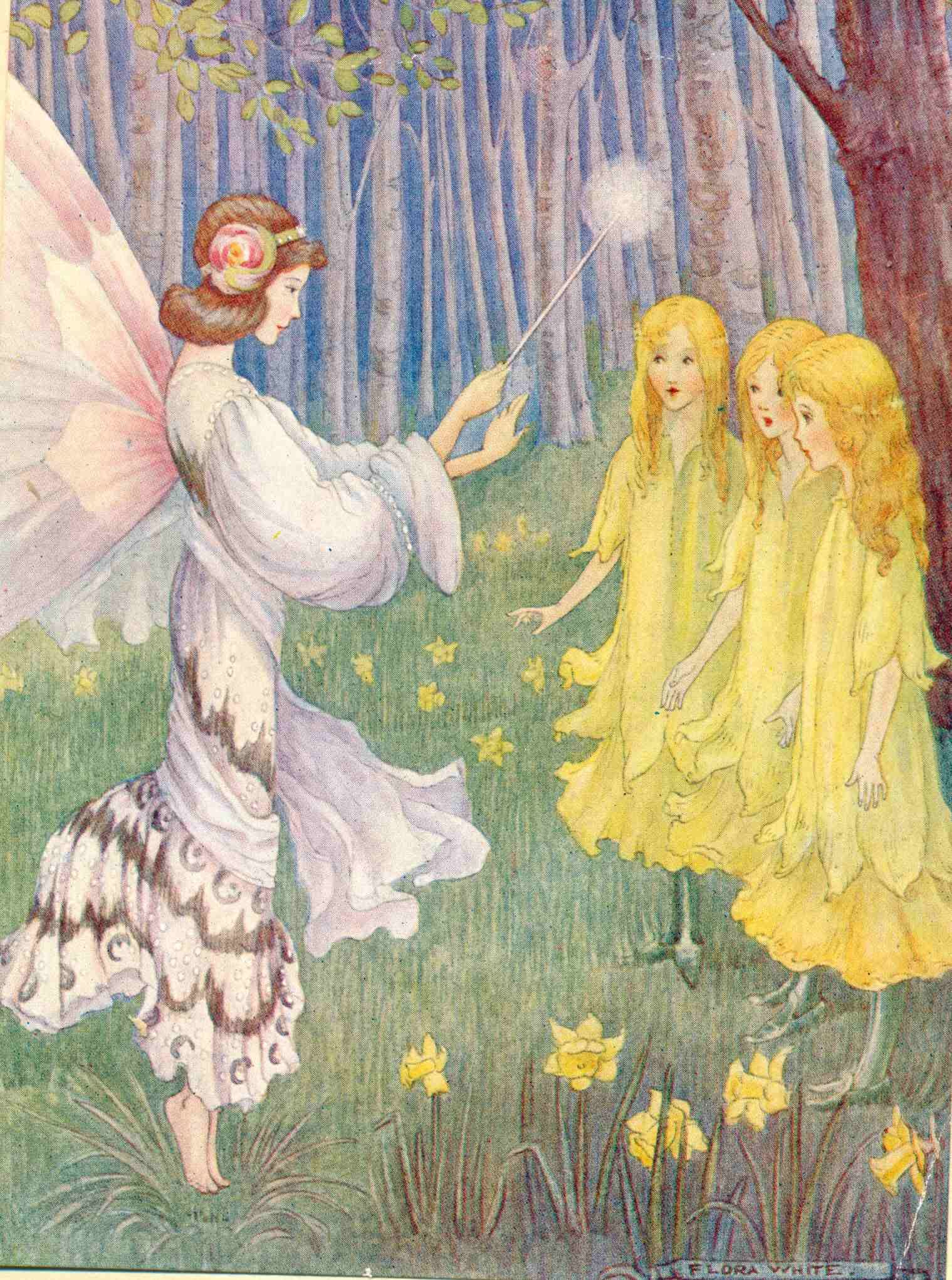 Daffodil Fairies antique illustration from Stories Told to