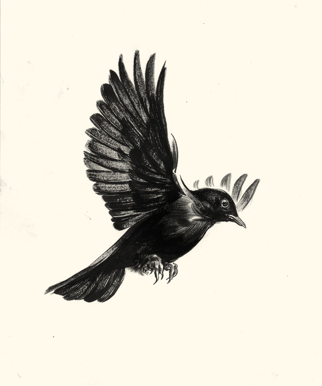 c320a496264fd Blackbird of Harkers Drop | Bird tattoo | Black bird tattoo, Birds ...