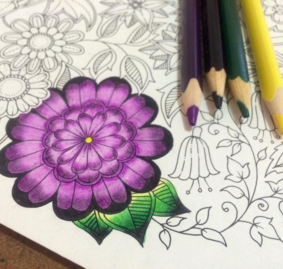Jardim Secreto, Inspiração, Fazendo Arte!