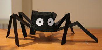 araignée avec une boite d'oeufs