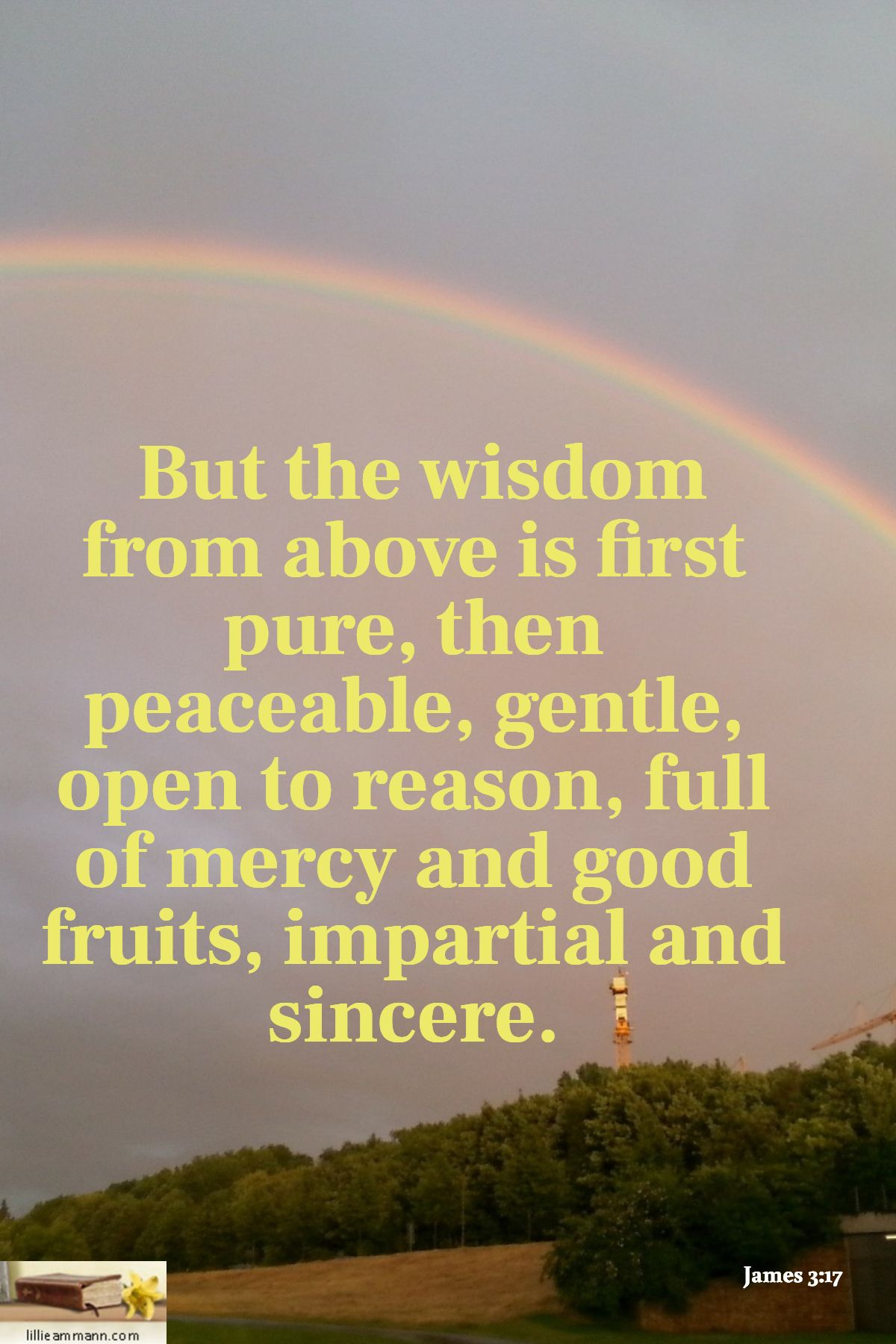 James 3:17 / But the wisdom from above is first pure, then peaceable, gentle, open to reason, full of mercy and  good fruits, impa… | Best fruits, Wisdom, Quotations