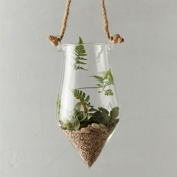 Hanging Arrow Terrarium (€25) ❤ liked on Polyvore featuring home, home decor, floral decor, clear, succulent terrarium and arrow home decor