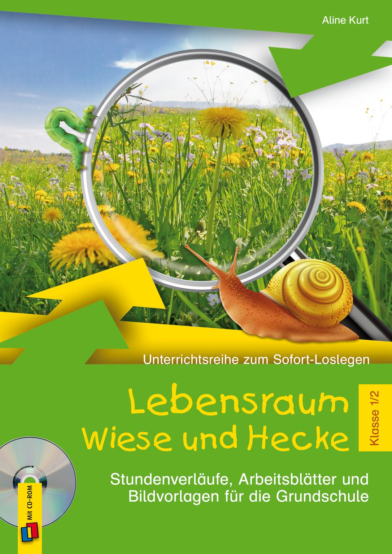 Unterrichtsreihe zum Sofort-Loslegen - Lebensraum Wiese und Hecke ...