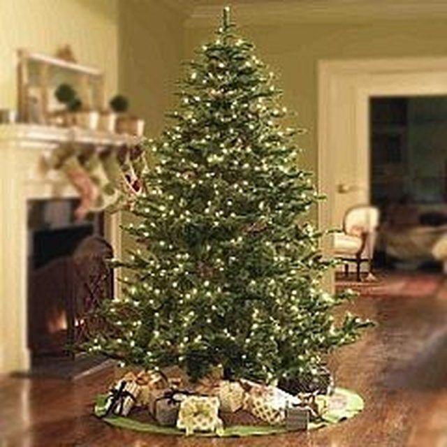 How to Keep a Potted Christmas Tree Alive | Christmas tree ...