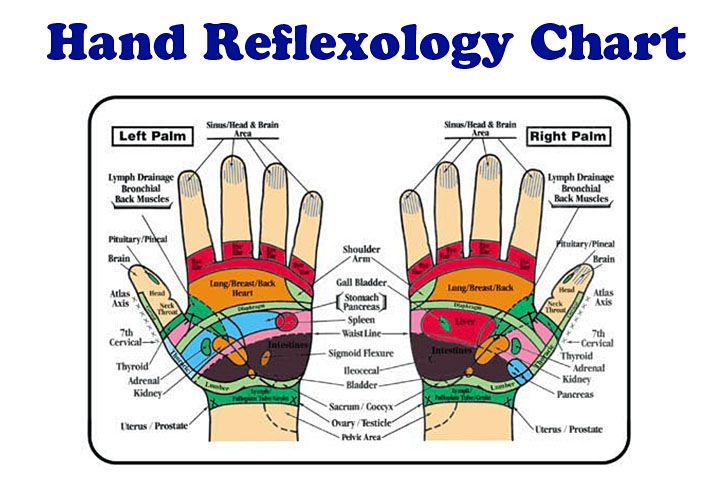 Some Great Video Tutorials And Information On Massage Reflex Acupressure And Acupuncture Points Reflexology Reflexology Chart Hand Reflexology