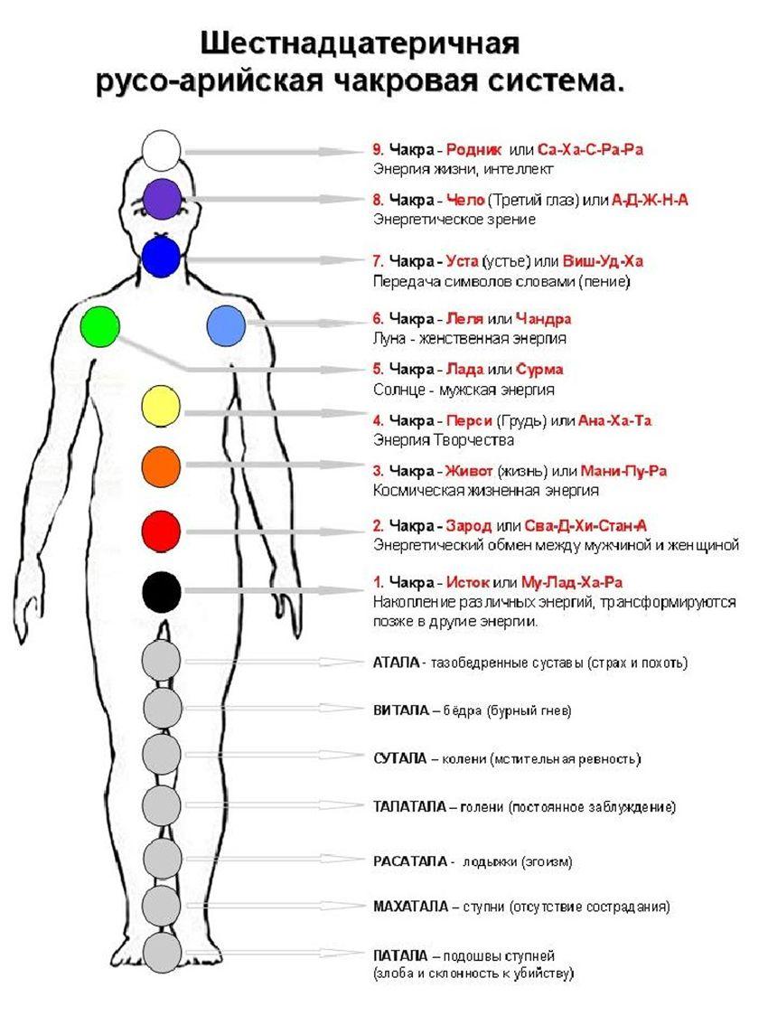 Какая чакра отвечает за суставы боли в мелких суставах и мышцах