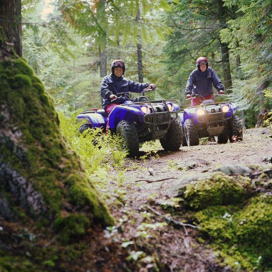 Rugged ATV trails wind through towering forests near Red River.