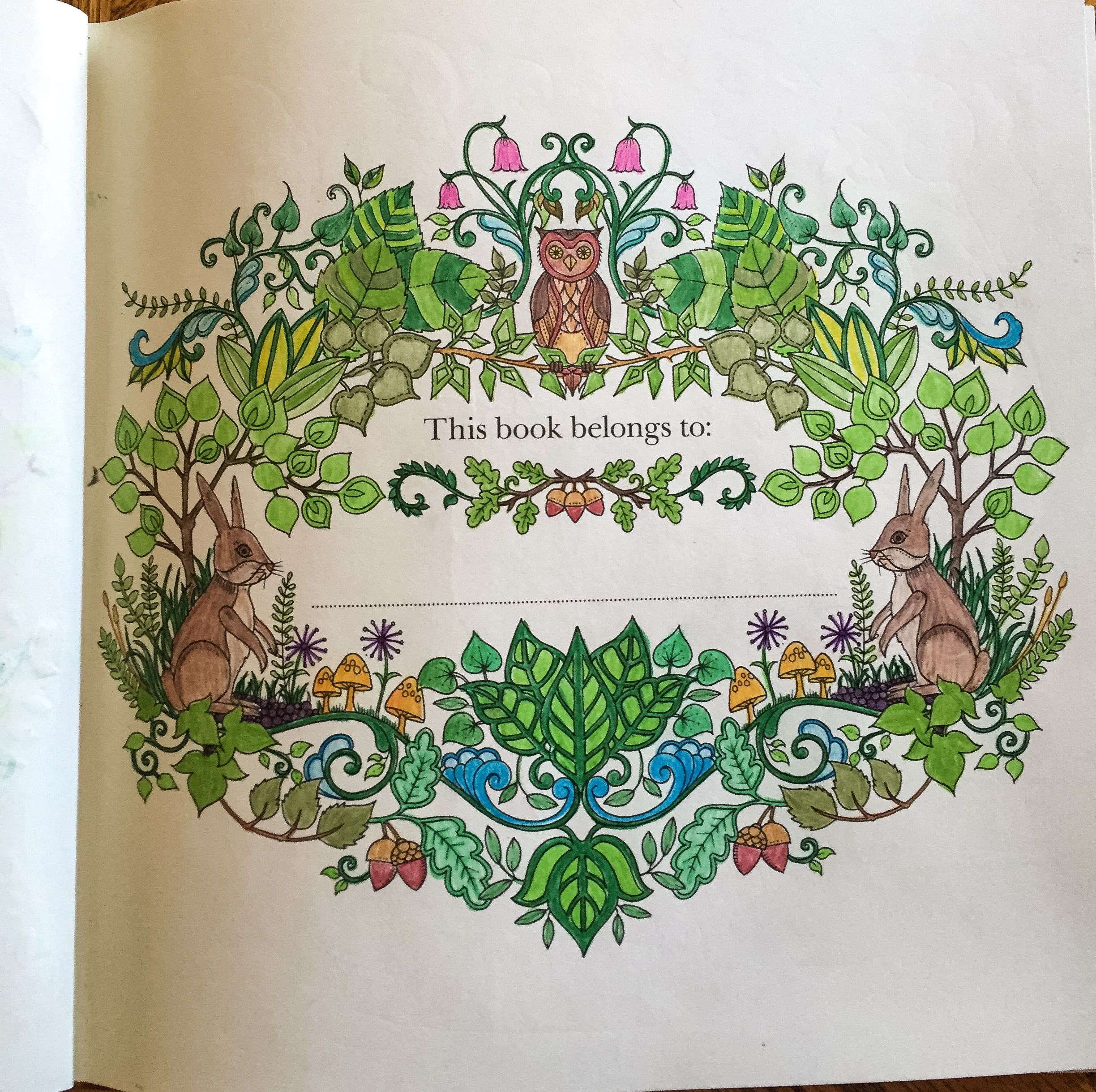 Johanna Basford #Enchanted Forest #Adult Colouring #Page 2. Coloured ...