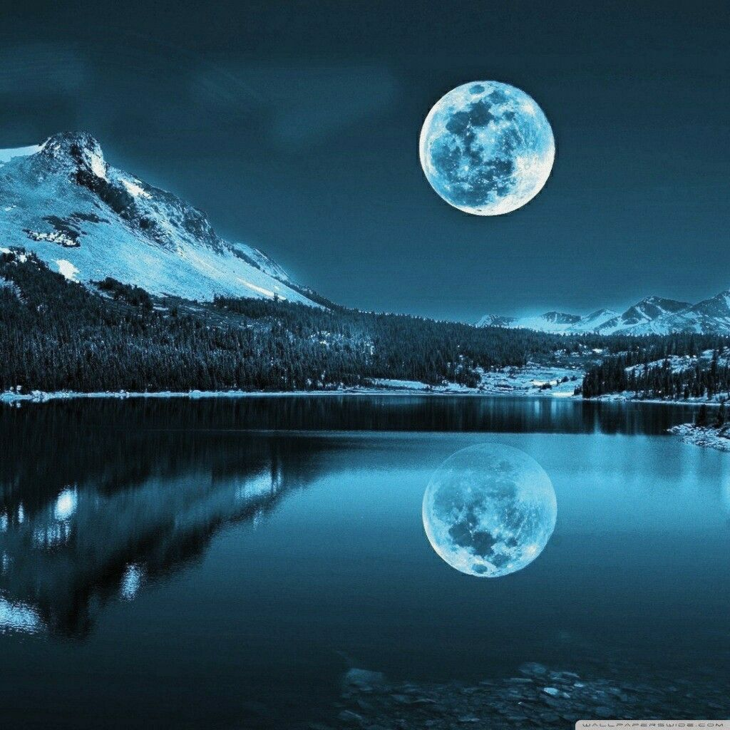 Panda Character Meditating On Moon 4k Hd Artist 4k Wallpapers Images Backgrounds Photos And Pictures