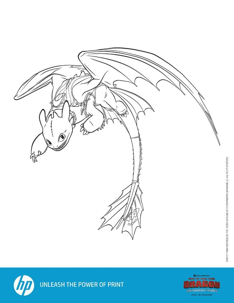 How To Train Your Dragon The Hidden World Prints From Hp How Train Your Dragon How To Train Your Dragon How To Train Dragon