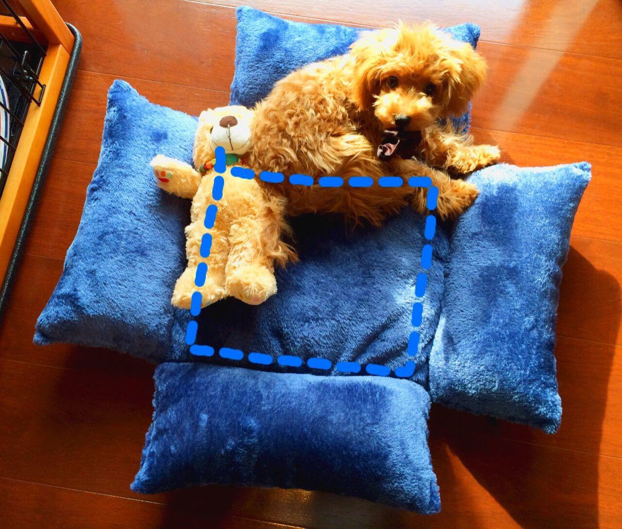 100円クッションを使った犬用ベッドの作り方 借りぐらしのショコラッティ 犬用ベッド ベッド の 作り方 手作りベット
