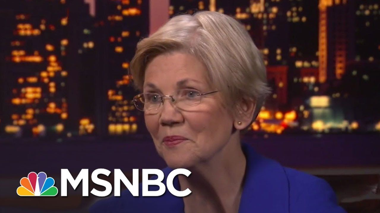 Elizabeth Warren: 'We Stand Up And We Fight Back'   Rachel Maddow   MSNBC 9:46 mins