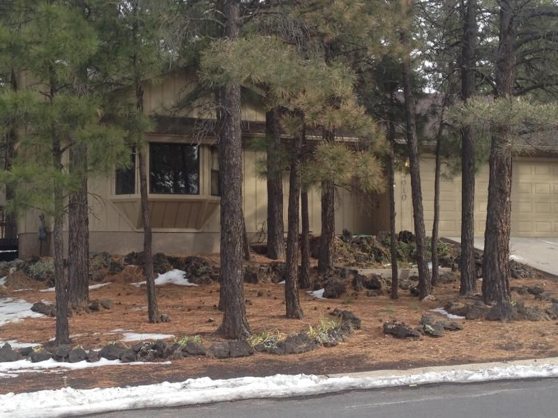 view for in cabin and flagstaff arizona side mountain cabins accommodations rent inn edited