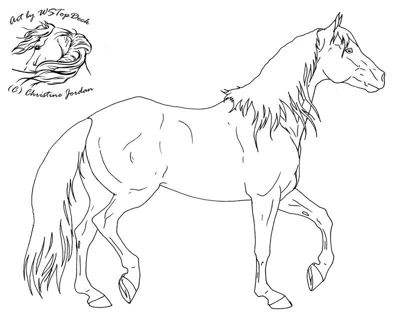 Stock Horse Lineart Free Use By Wstopdeck On Deviantart Horse