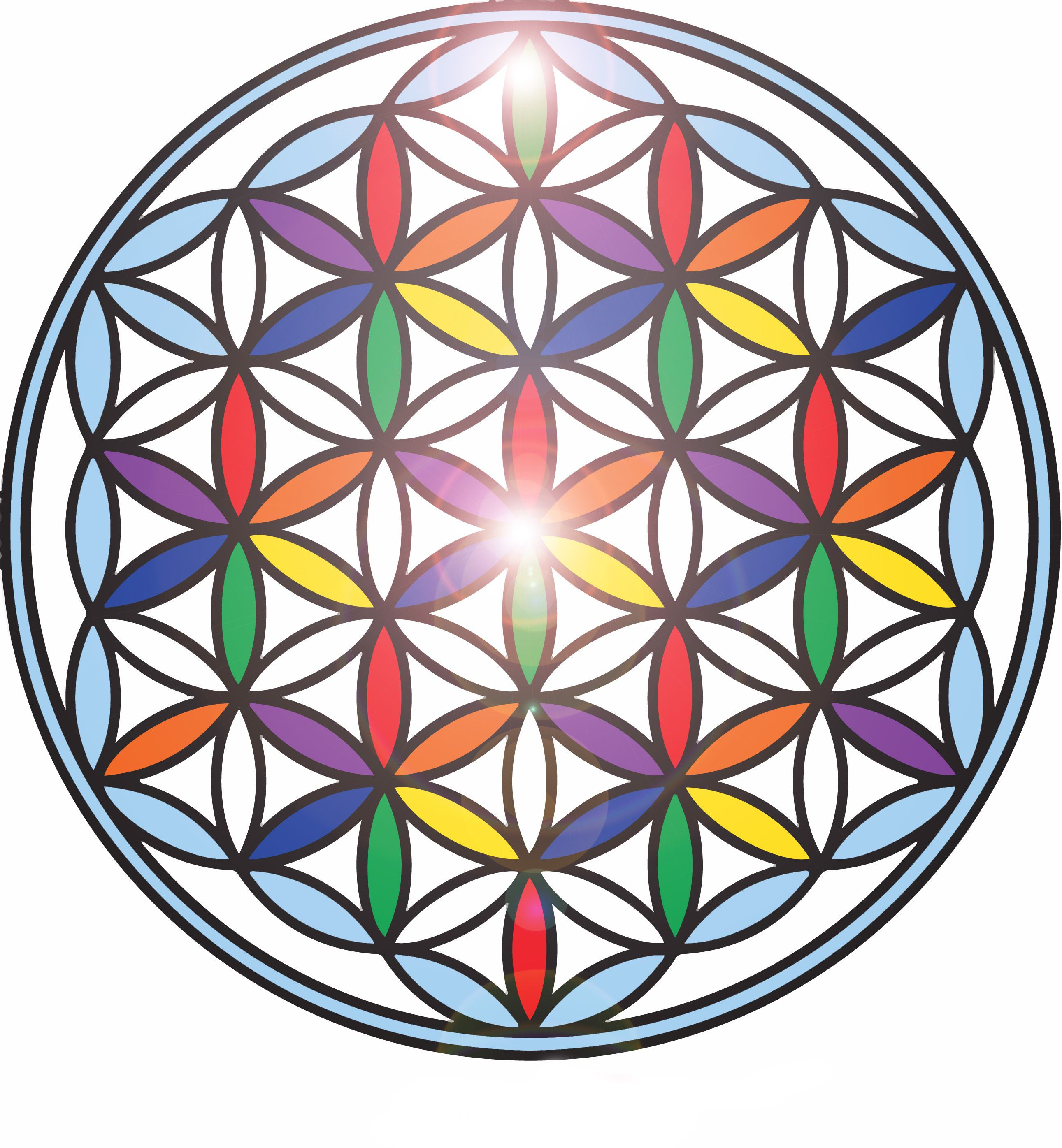 Brincando no sacred geometry symbols flower