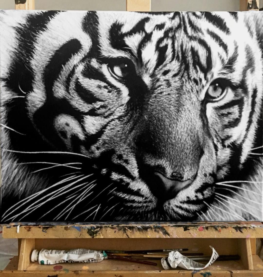 Tiger Painting Nick Sider Drawing And Realistic Paintings