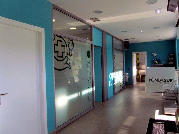 Proyectos de decoraci n cl nica veterinaria en oviedo - Diseno de clinicas veterinarias ...