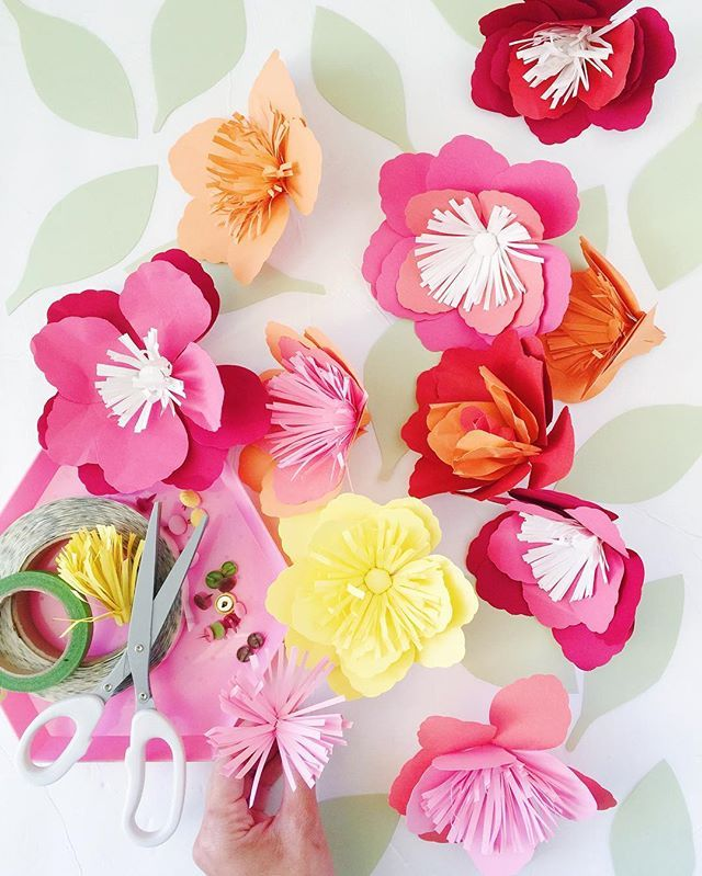 During a recent purge i found these diy paper flower kits i bought during a recent purge i found these diy paper flower kits i bought from papersource mightylinksfo
