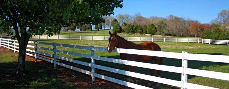 Home fence landscaping backyard fences pasture fencing