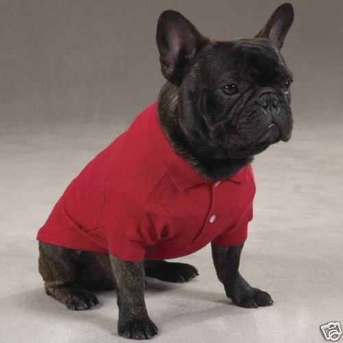 I Would Clothe My Frenchie Always Dog Polo Shirts Dog Shirt French Bulldog