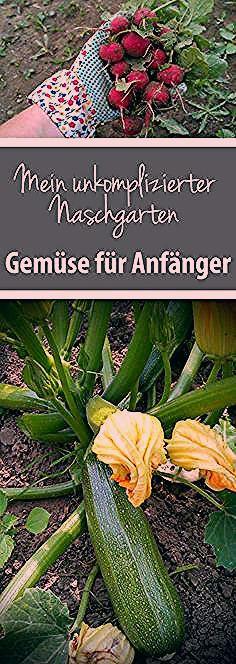 Photo of Unkomplizierter Naschgarten – Gemüse für Anfänger – grüneliebe