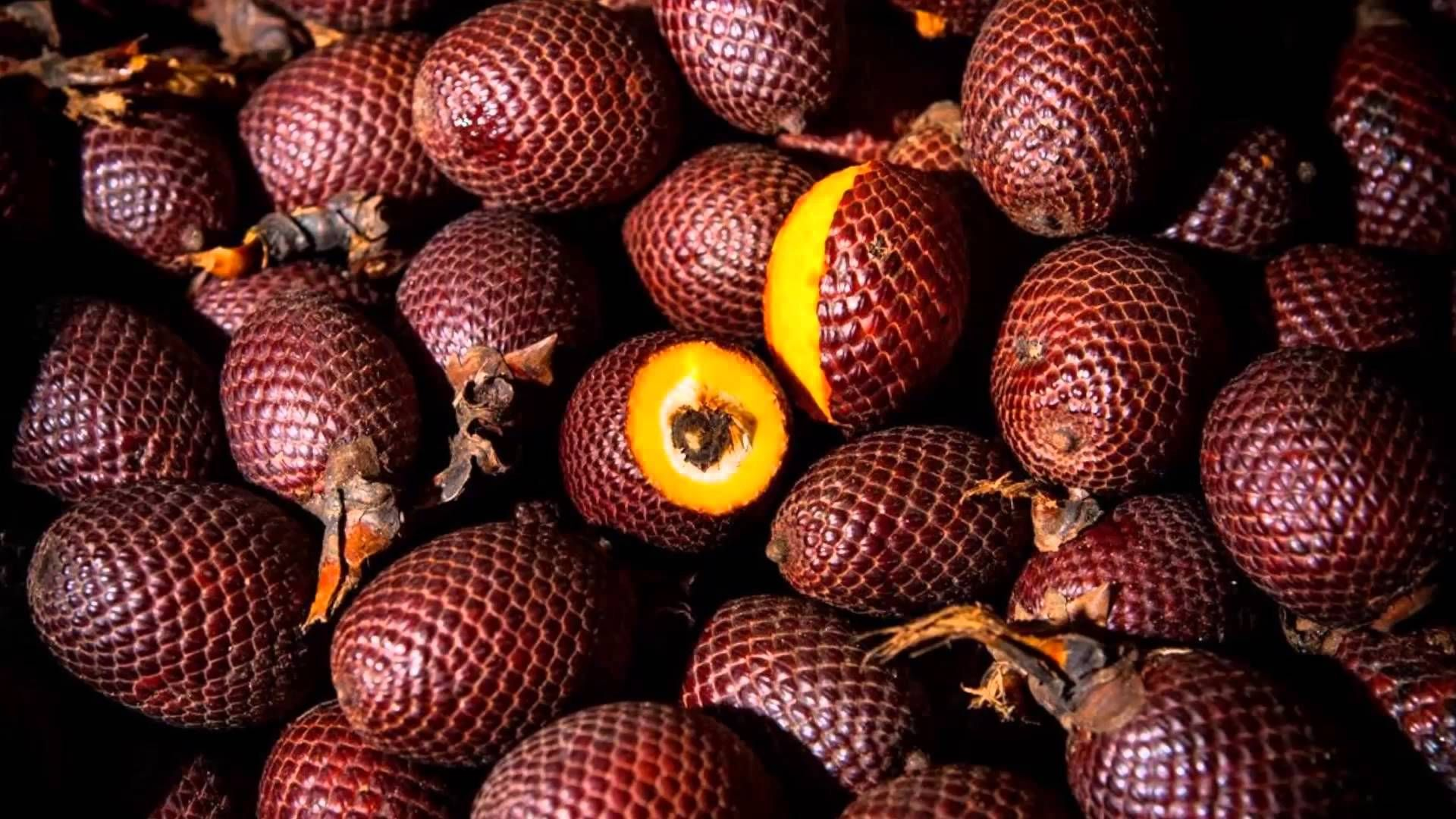 Aguaje The Miracle Fruit For Women Fruit Haitian Food Recipes Beautiful Curves