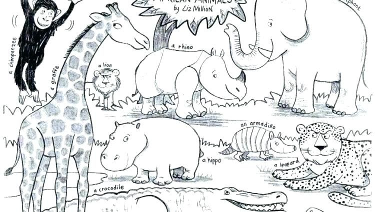 Realistic African Animal Coloring Pages Animals X A Previous Image Zoo Animal Coloring Pages Animal Coloring Pages Farm Animal Coloring Pages
