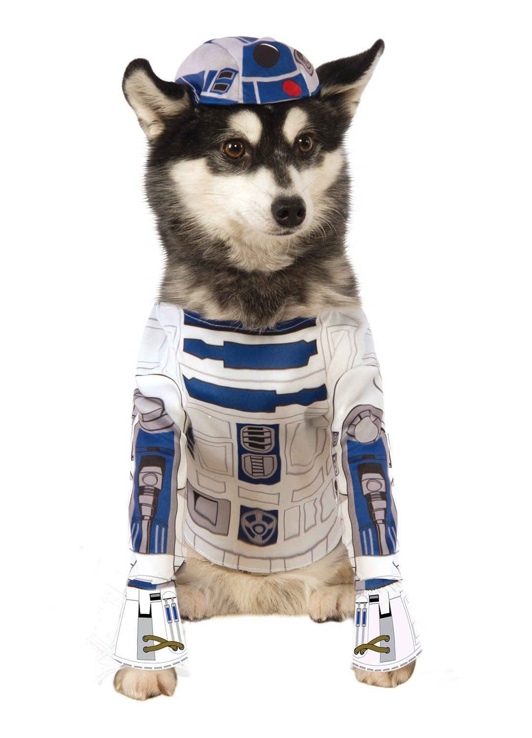 Amazon.com   Star Wars R2-D2 Pet Costume   Pet Supplies  e208649e4c6e