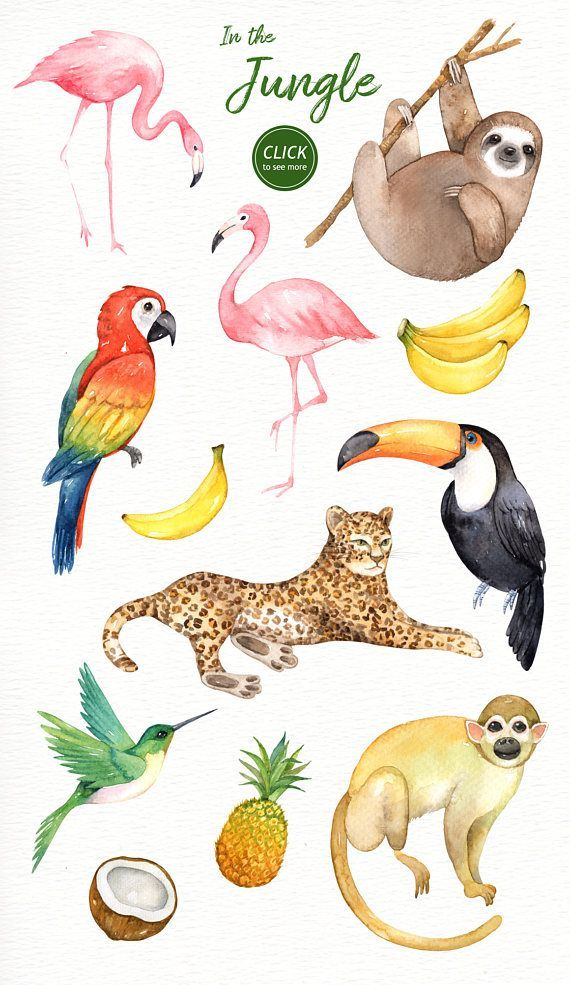 In the Jungle Watercolor Clipart Woodland Animals Kids Clipart Nursery Decor Watercolor Leaf Wedding Clip Art Tropical Clipart Sloth  The set of high quality hand painted...