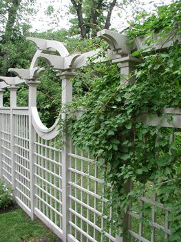 large curved privacy screen fence fencing great site for garden
