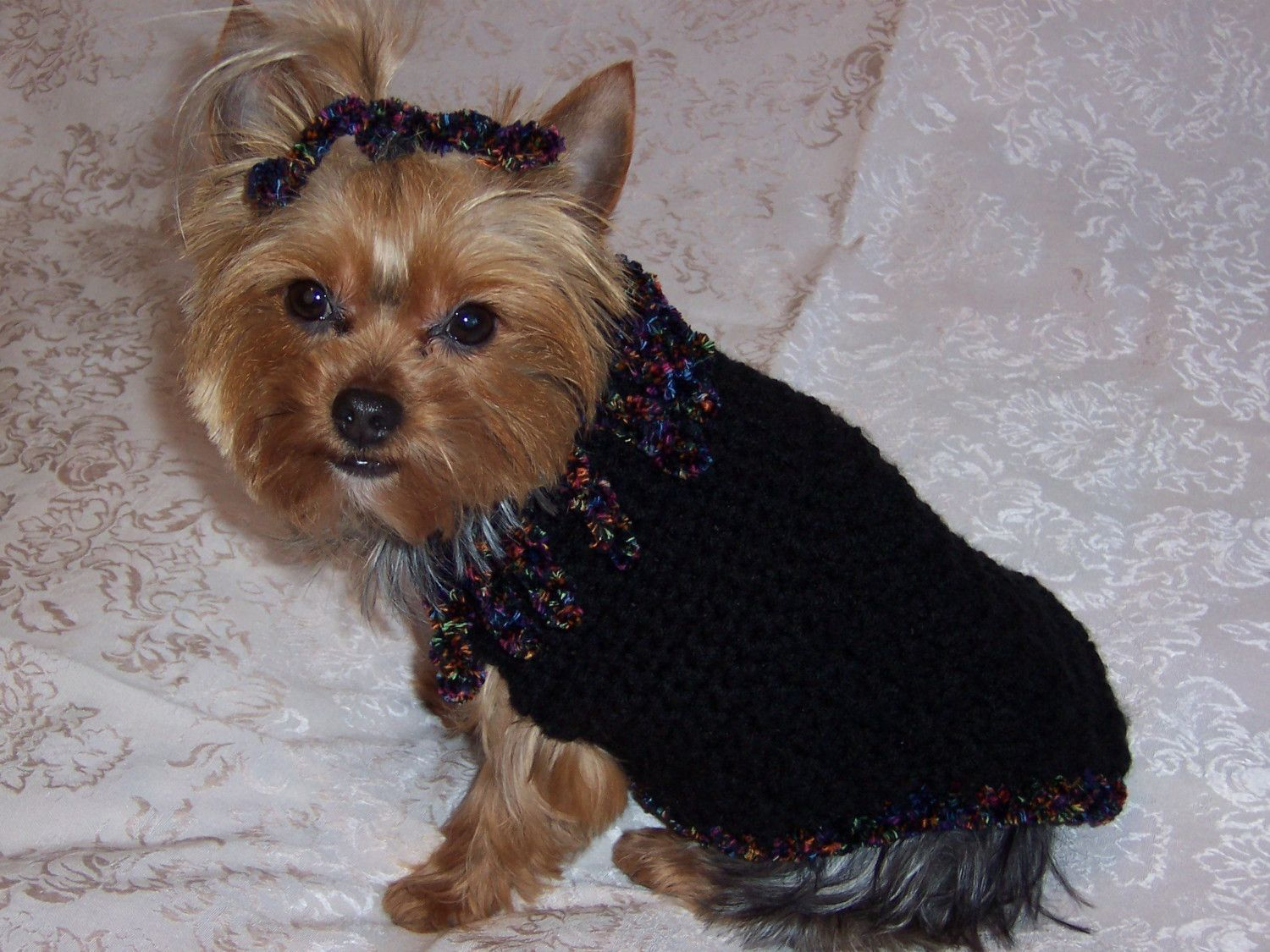 Free Crochet Dog Sweater Patterns - Dog Lovers Gifts | Drama/ Odie ...