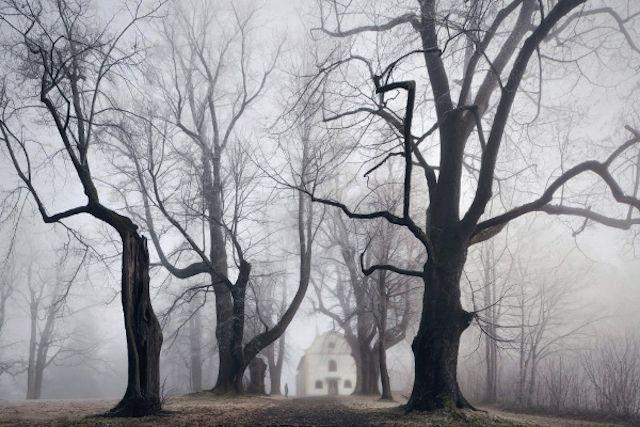 Brothers Grimm Landscapes Fotos De Paisagem Fotos Do Assombro E