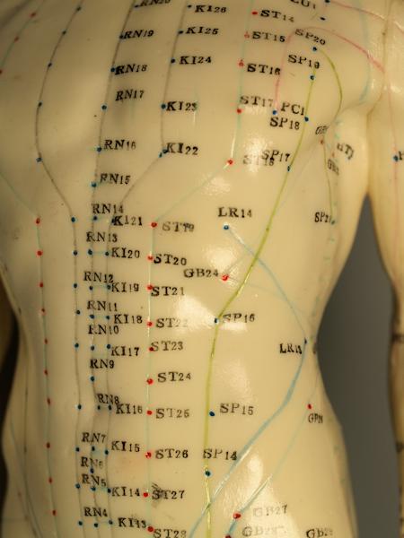 Abdominal Acupuncture Points  Acupuncture Points -4205