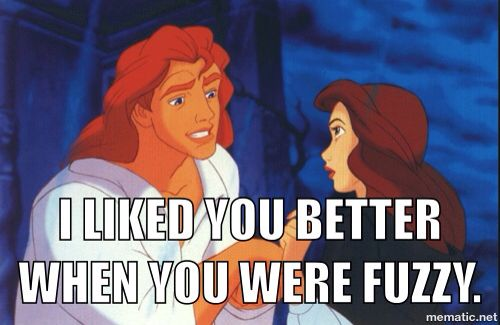 ae59d35a21e791e24e224ccc4406d133 a beauty and the beast meme made by me funny memes pinterest