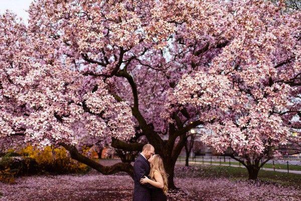 Cherry Blossom Engagement Shoot In Washington Dc Junebug Weddings Engagement Shoots Dc Engagement Photos Cherry Blossom