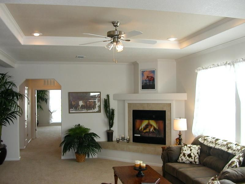 Family room tray ceiling decorating ideas google search - Simple ceiling design for living room ...