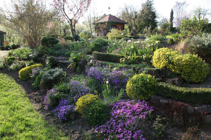 hanggarten buchsbaumhecken kreativ gestalten