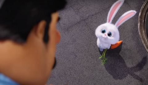 Pin By Zahraa Munther On Zahraa Secret Life Of Pets Universal Pictures Secret Life