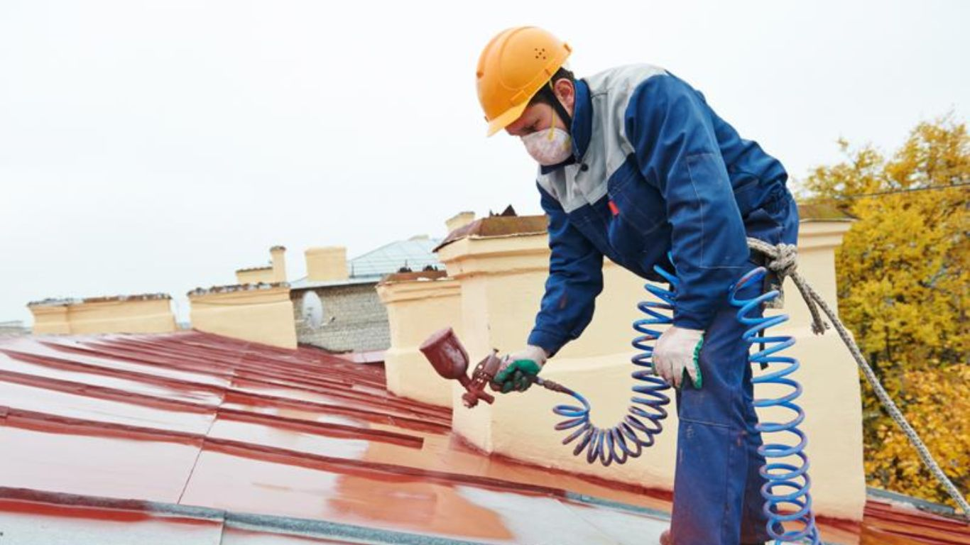 Best Paint Sprayer Reviews Roof restoration, Roof paint