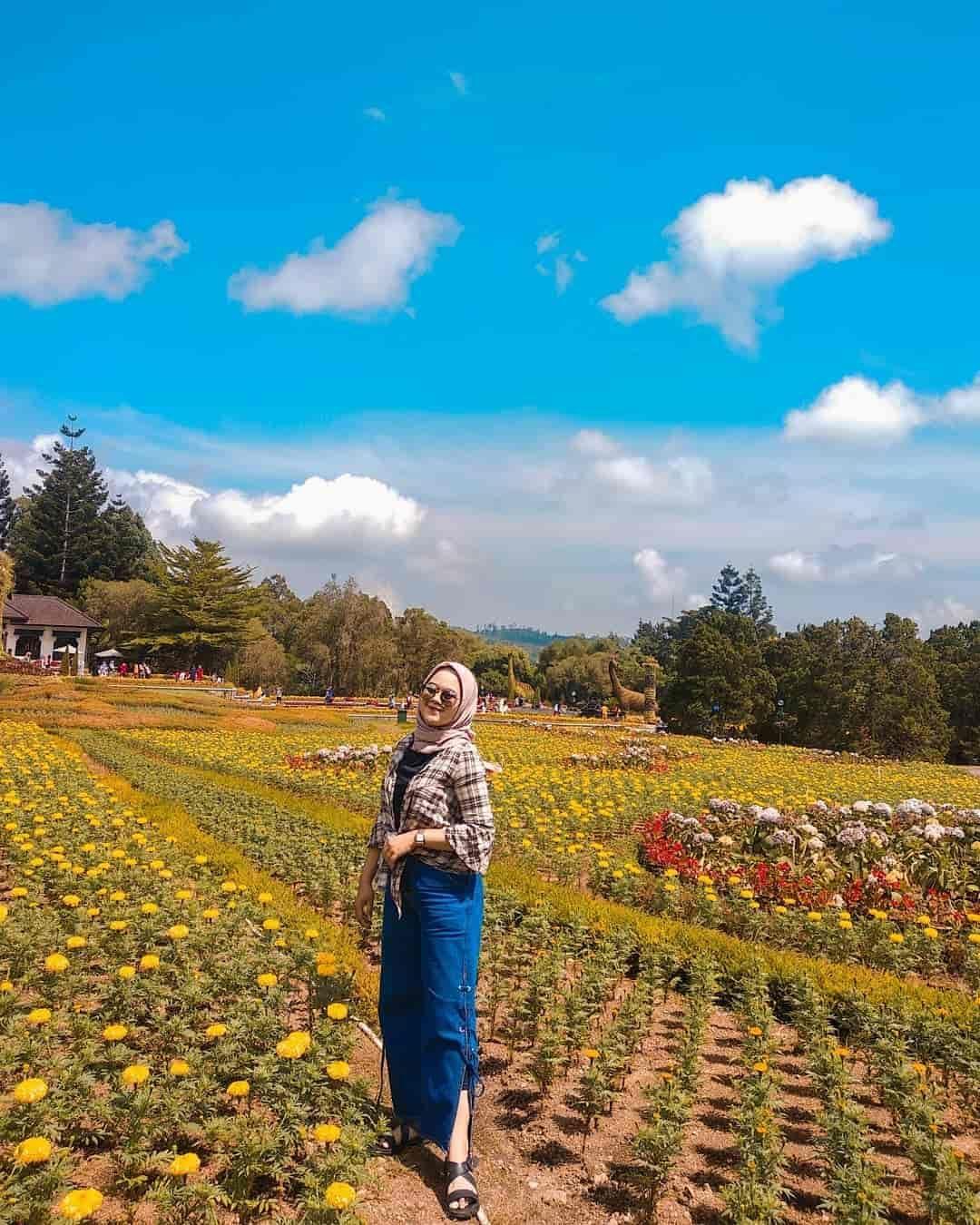 Taman Bunga Nusantara Pesona Keindahan Taman Berbagai Tema Taman Bunga Bunga Taman
