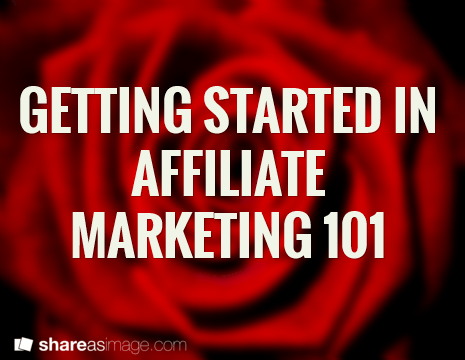 GETTING STARTED IN AFFILIATE  MARKETING 101.