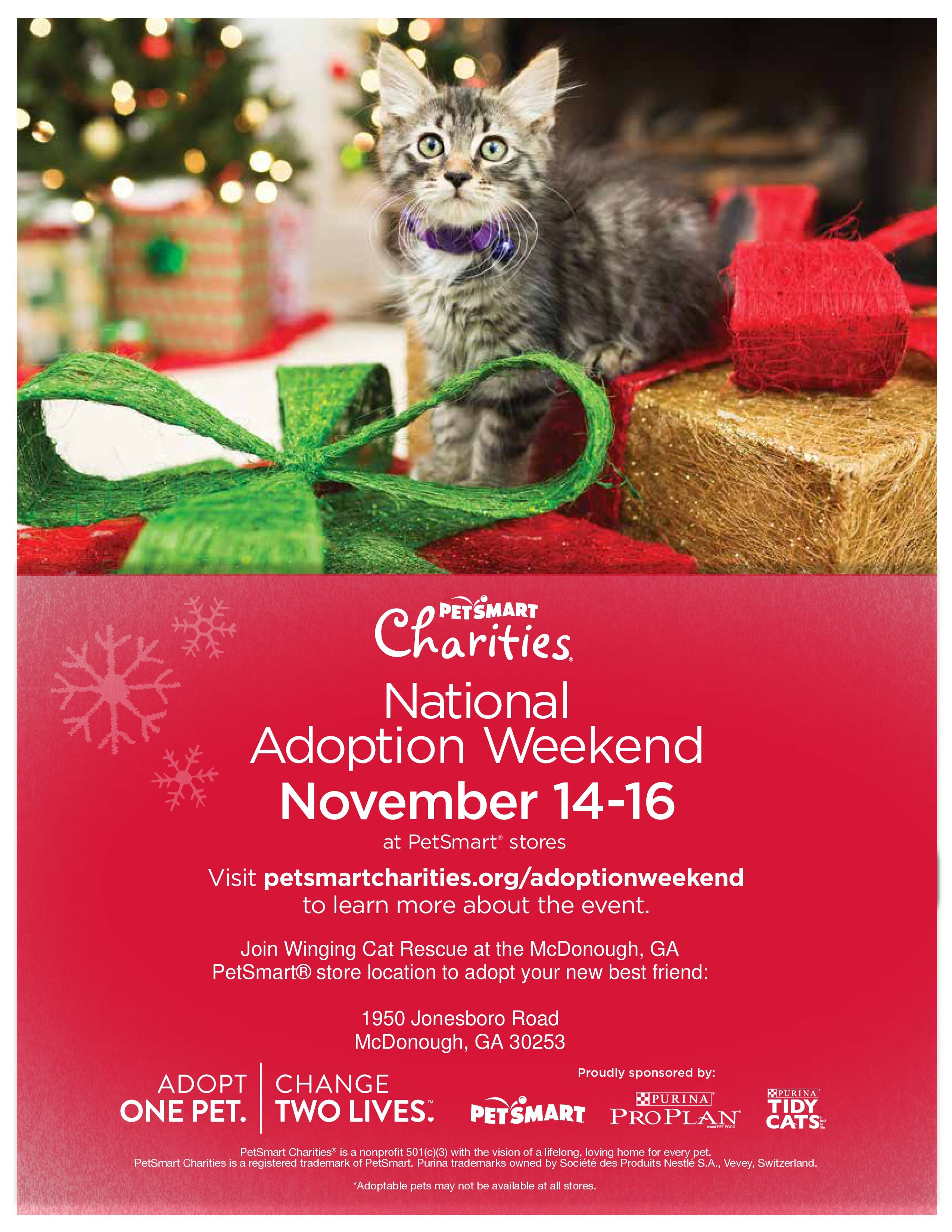 Please Come Meet Your New Best Friend At Petsmart Mcdonough Ga This Weekend Nov 14 16 Lots Of Kittens Cats In Ne Pet Smart Store Petsmart Cats And Kittens