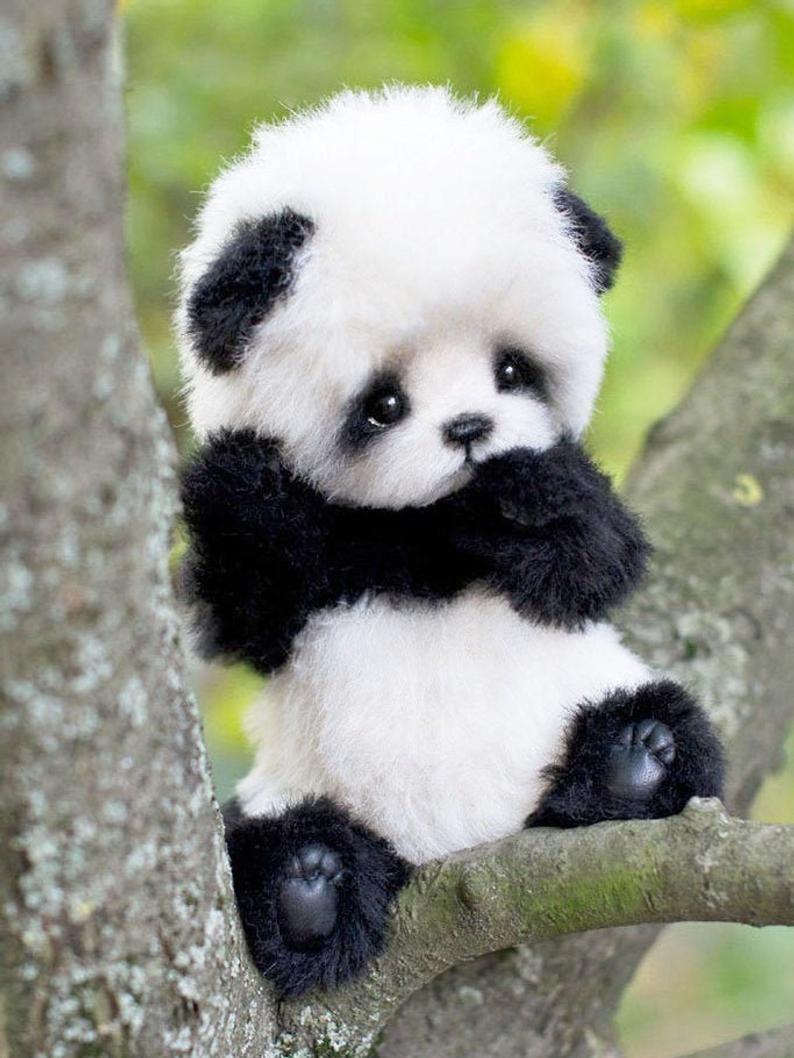 Teddy Bear Panda Pattern Pdf, Pattern For Sewing S